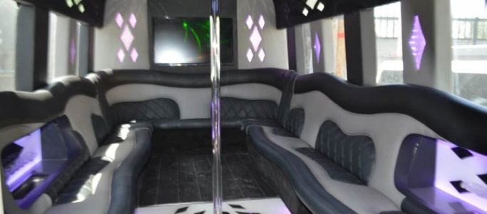 24 passenger ford E450 party bus for sale