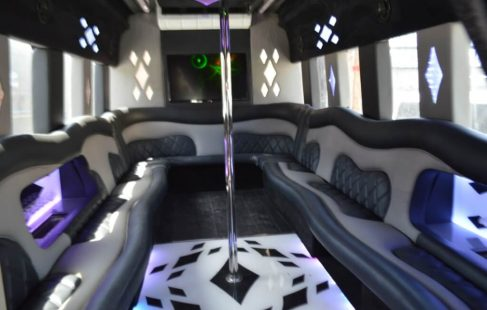42 inch flat screen white 24 passenger ford E450 party bus for sale #2438