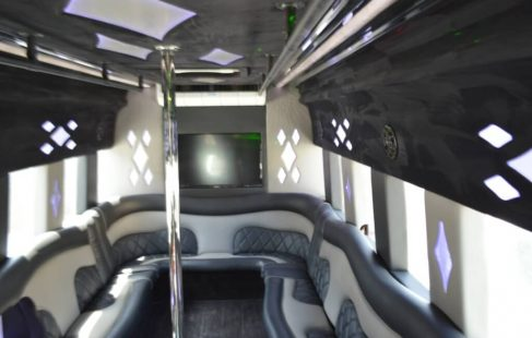ceiling right side white 24-passenger ford E450 party bus for sale #2438