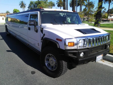 Stretch Hummers