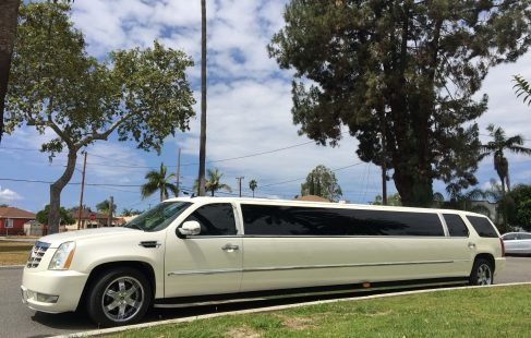 2007 pearl white 200-inch cadillac escalade limousine for sale #2452 left side