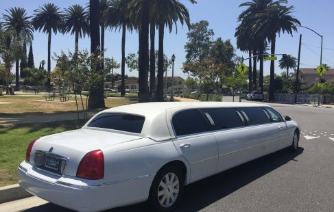 2004 white 120-inch lincoln towncar limousine for sale right rear