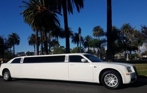 2008 cool vanilla 140-inch chrysler 300 limousine for sale 1295